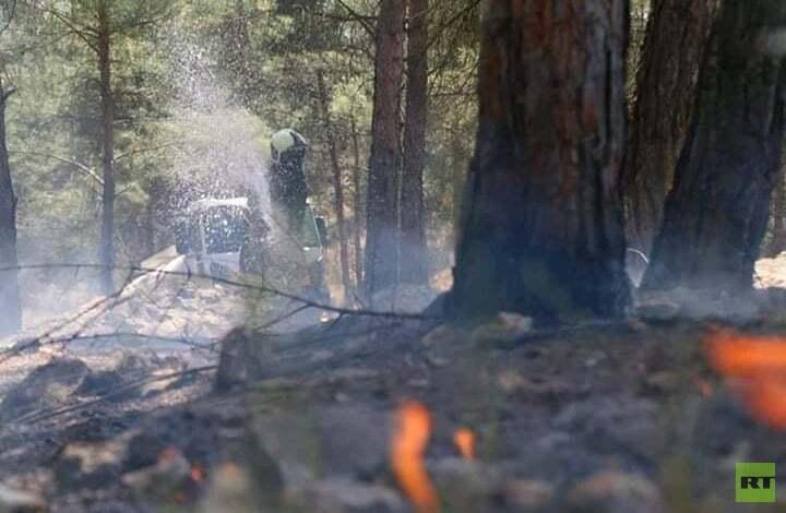 كما في عام سبق.. الحرائق تلتهم الأراضي الزراعية في سوريا