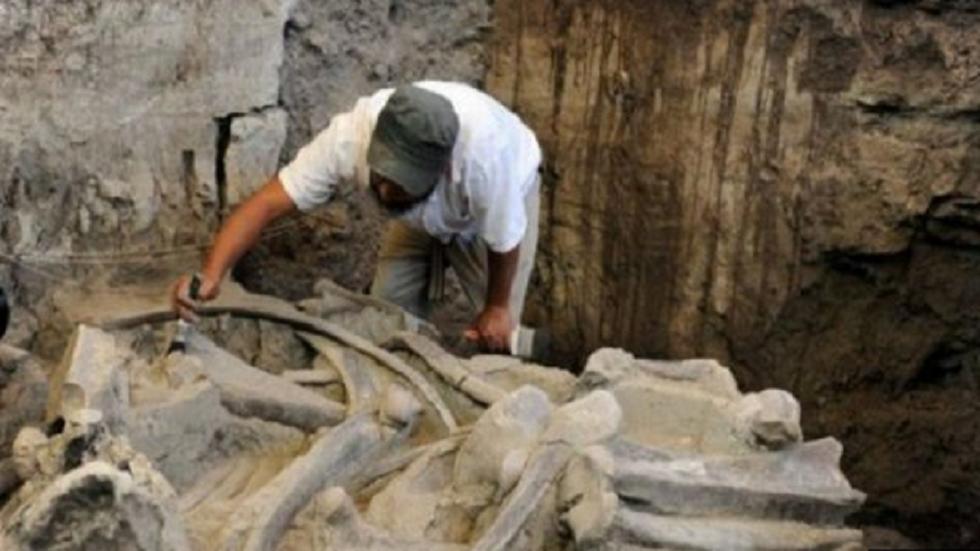 المكسيك.. اكتشاف مقابر قديمة للماموث والبشر