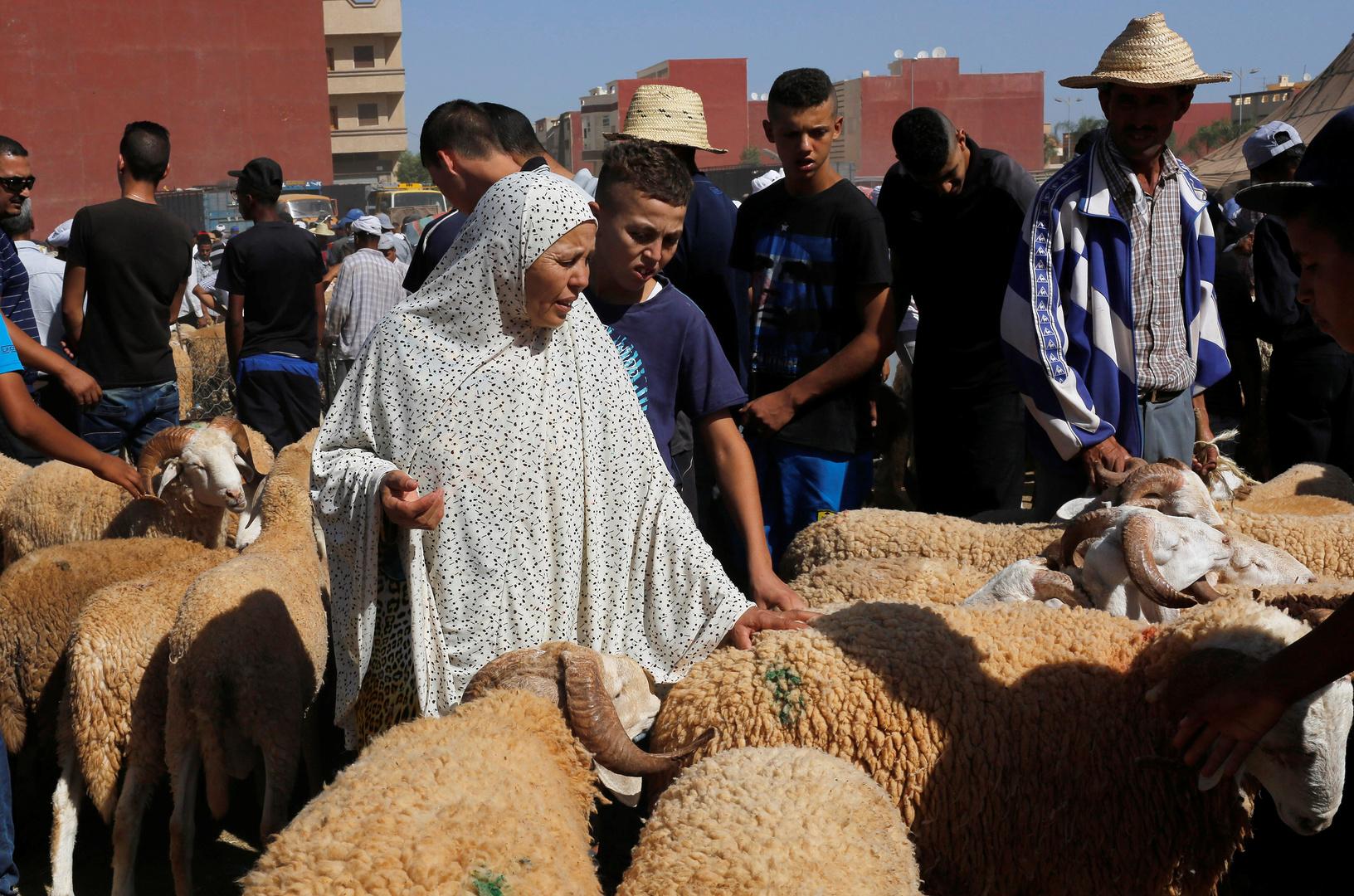 المغرب.. مسؤول يحذر من تداعيات إلغاء
