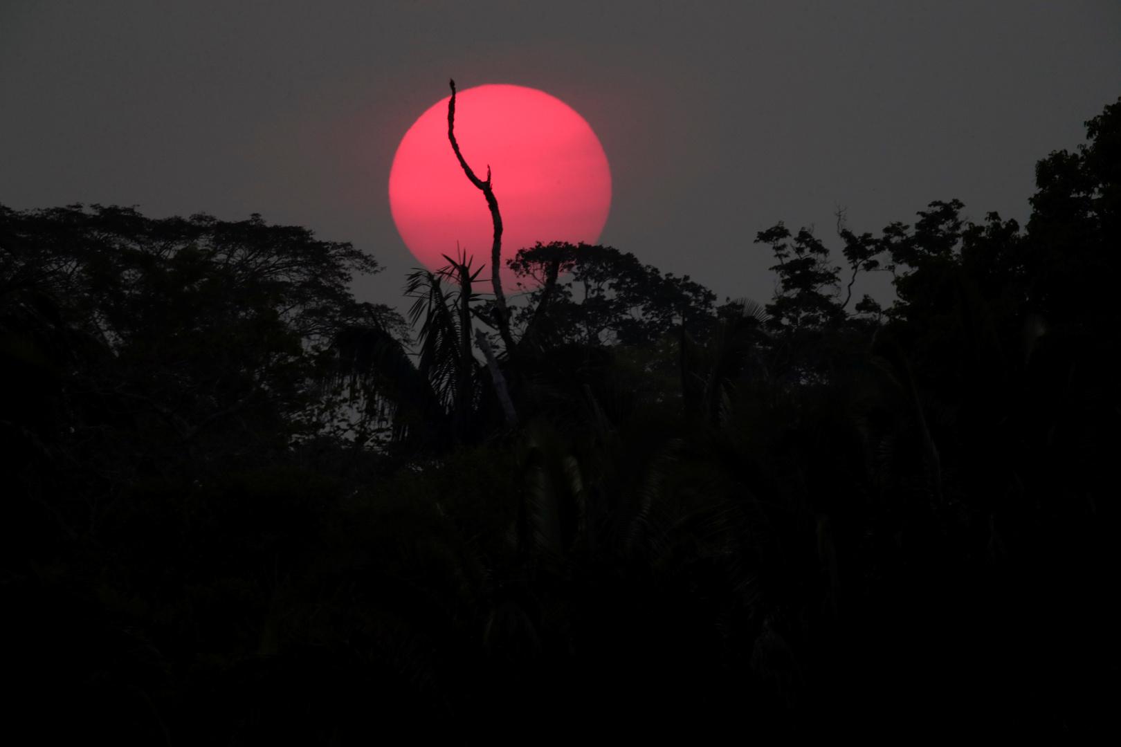 كورونا يهدد قبائل الأمازون بالاندثار