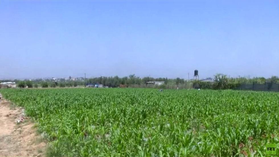 مشروع لاستصلاح أراض في قطاع غزة