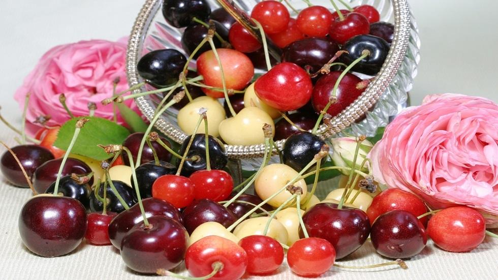 الكرز.. ثمرة لذيذة الطعم ومفيدة للدم