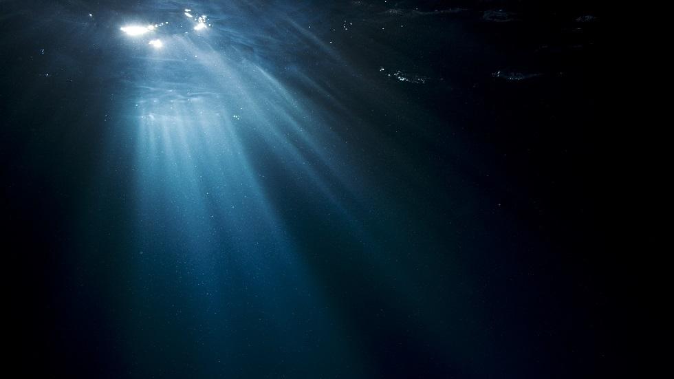 مخلوق بحري غريب قد يكون