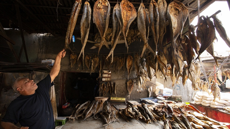 السمك المجفف في مدن جنوبي العراق