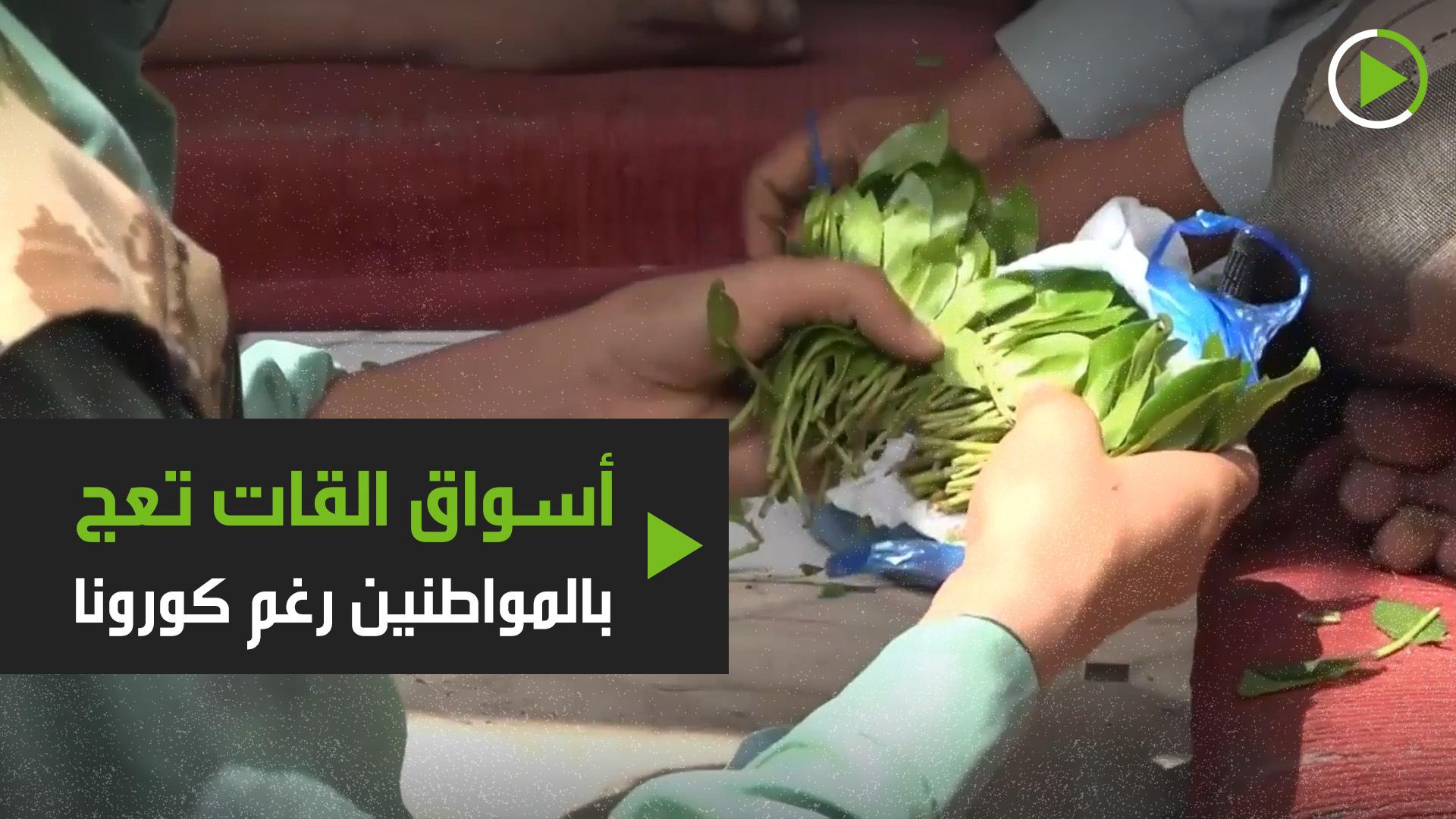 أسواق القات تعج بالمواطنين رغم كورونا في اليمن
