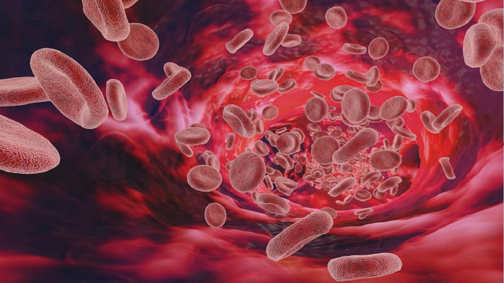 5 طرق يمكن من خلالها تعزيز الجهاز المناعي أثناء جائحة كورونا