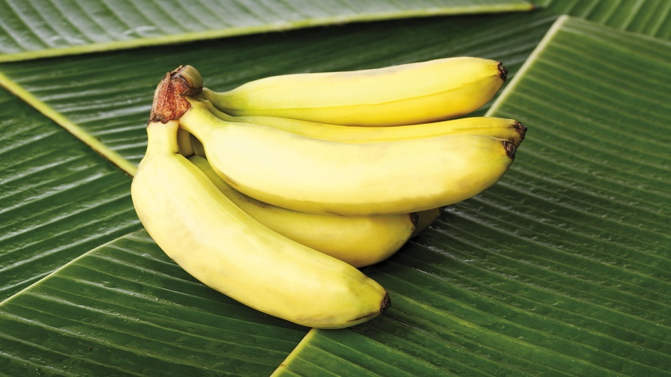 مواد غذائية لا ينصح بتناولها مع الموز