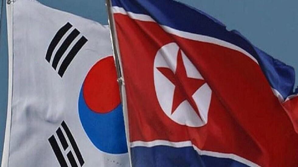 مسؤولة أممية: إرسال منشورات بالبالونات لكوريا الشمالية هو ممارسة لحرية التعبير!