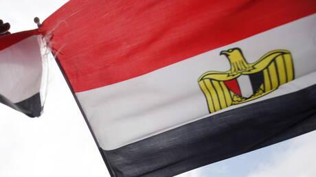 مصر تعلن عن إجراءات استباقية عاجلة لمنع هجمات أسراب الجراد الصحراوي على الحدود