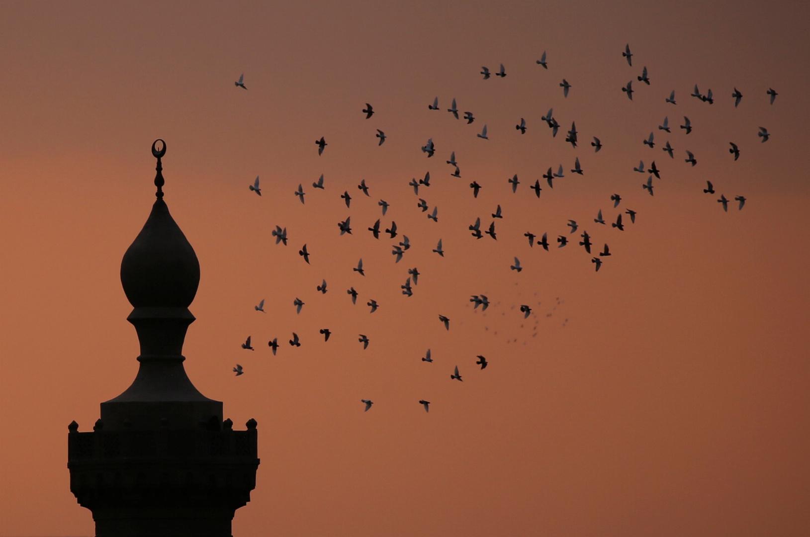 مصر تغلق مسجد الإمام الحسين لأجل غير مسمى وتحيل جميع الأئمة والعاملين فيه للتحقيق