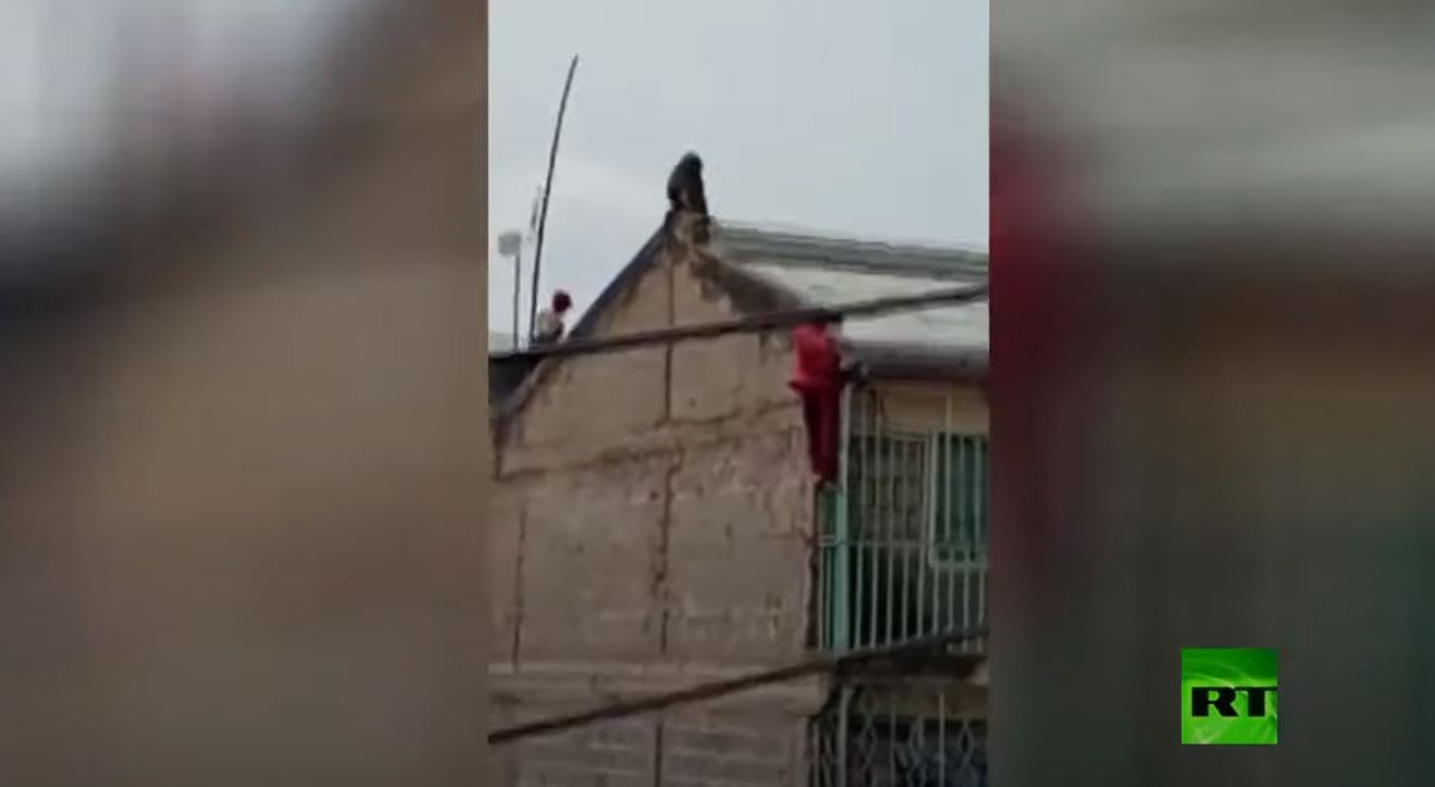 رجل يسقط من سقف مبنى بعد