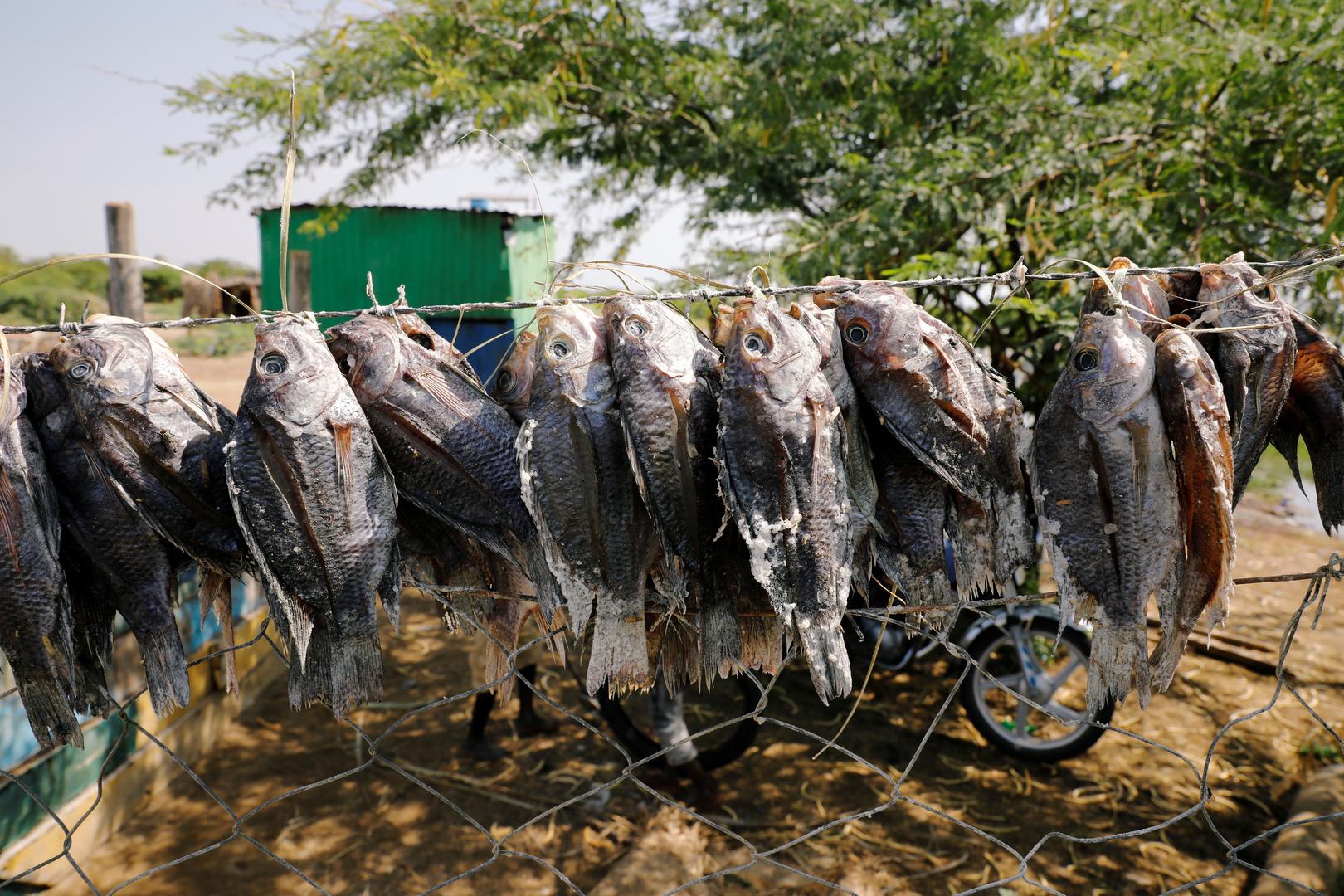 سد إثيوبي يهدد معيشة صيادين في كينيا