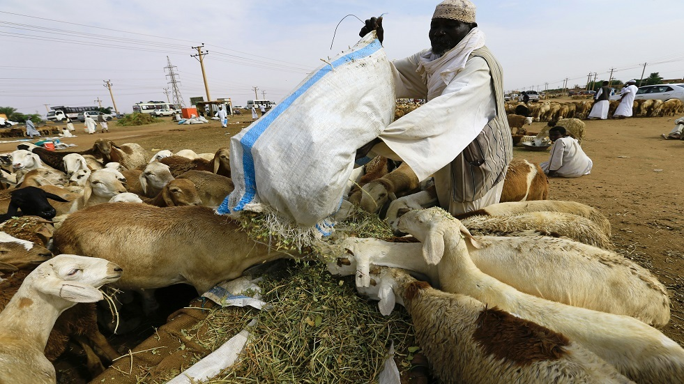 السعودية تعتذر للسودان عن إيقاف صادر الهدي والأضاحي