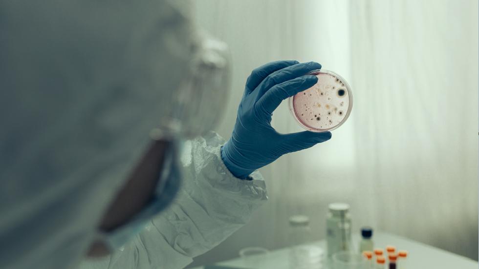 فيروس كورونا يقوم بتغييرات تجعل الخلايا غير قادرة على التعرف عليه