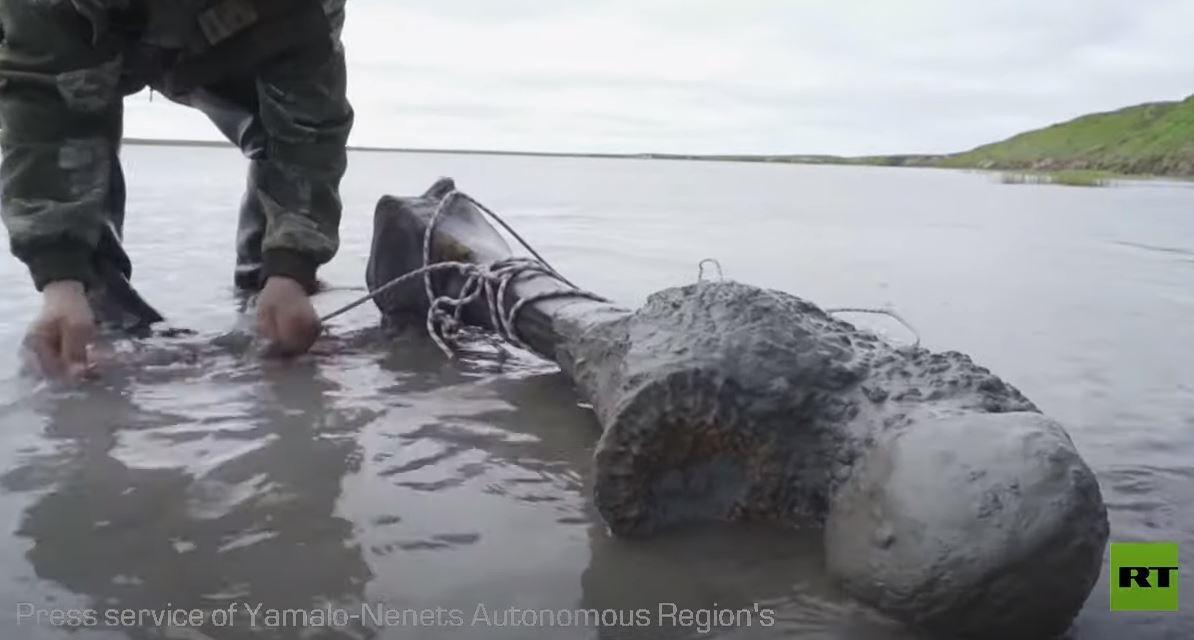 العثور على هيكل عظمي لماموث عملاق في بحيرة سيبيرية