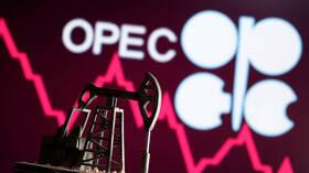 انخفاض أسعار النفط بعد قرار