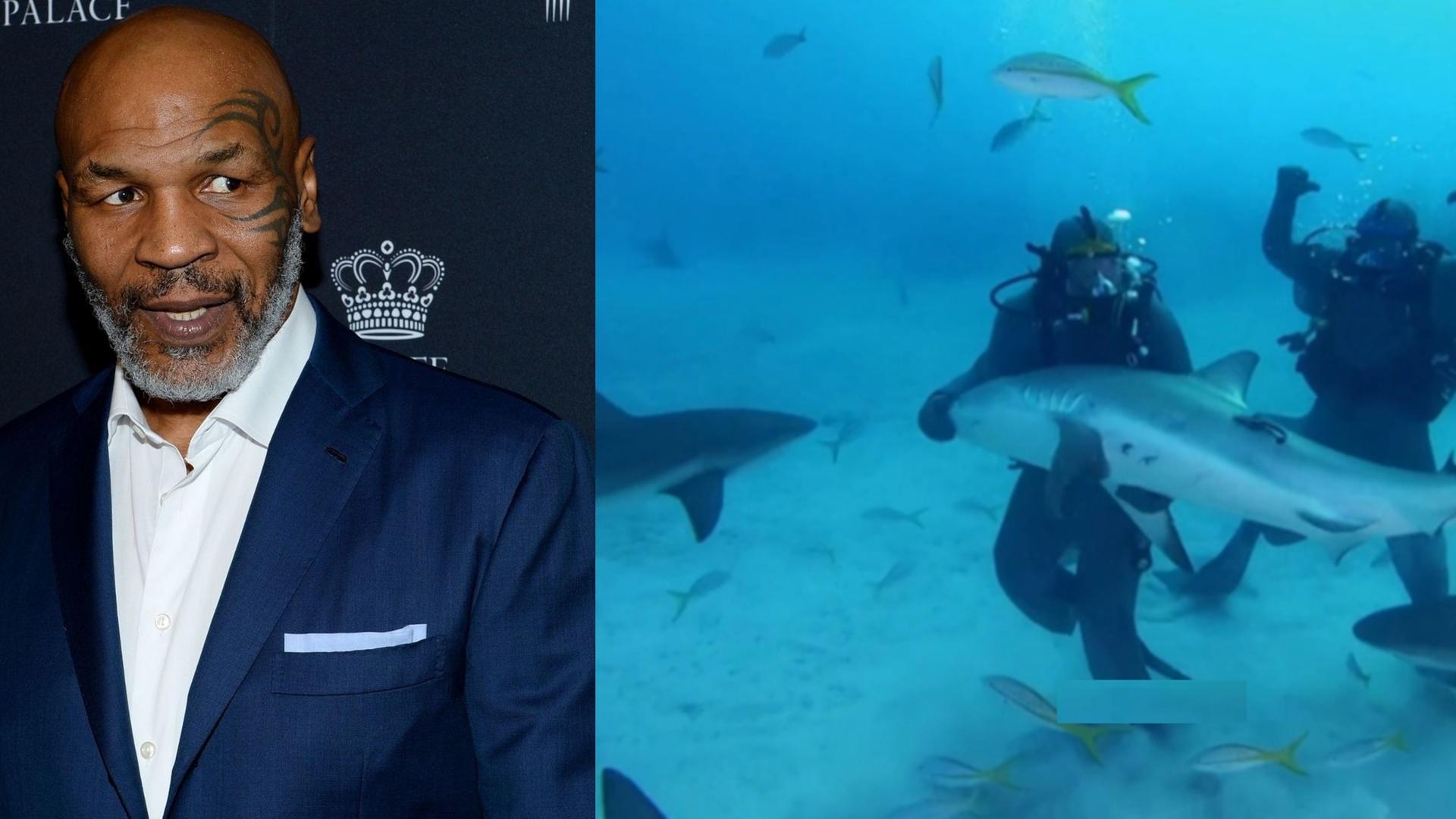 شاهد.. أسطورة الملاكمة يختبر نفسه في الأعماق مع أسماك القرش قبل النزال المنتظر