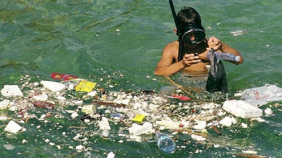 اكتشاف دقائق البلاستيك في المأكولات البحرية
