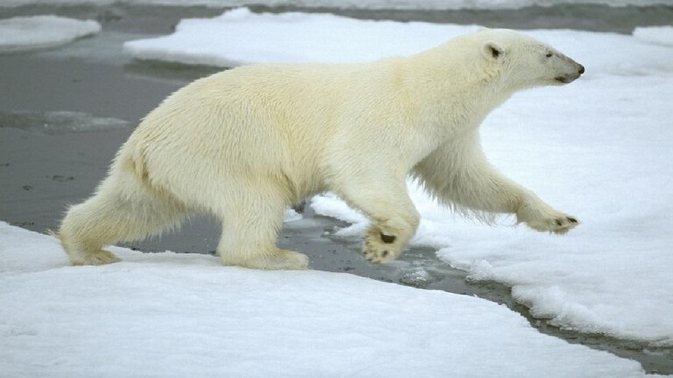 اكتشاف مضيق جديد في القطب الشمالي