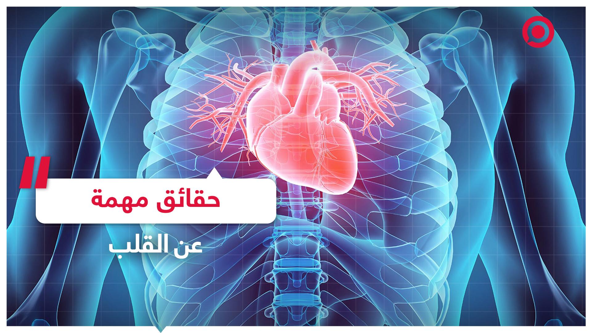 8 حقائق مهمة عن القلب