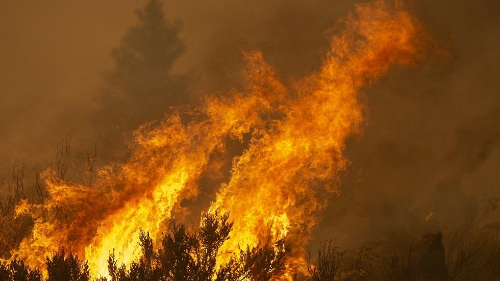 حاكم كاليفورنيا: التغير المناخي هو السبب الرئيسي لحرائق الغابات في البلاد