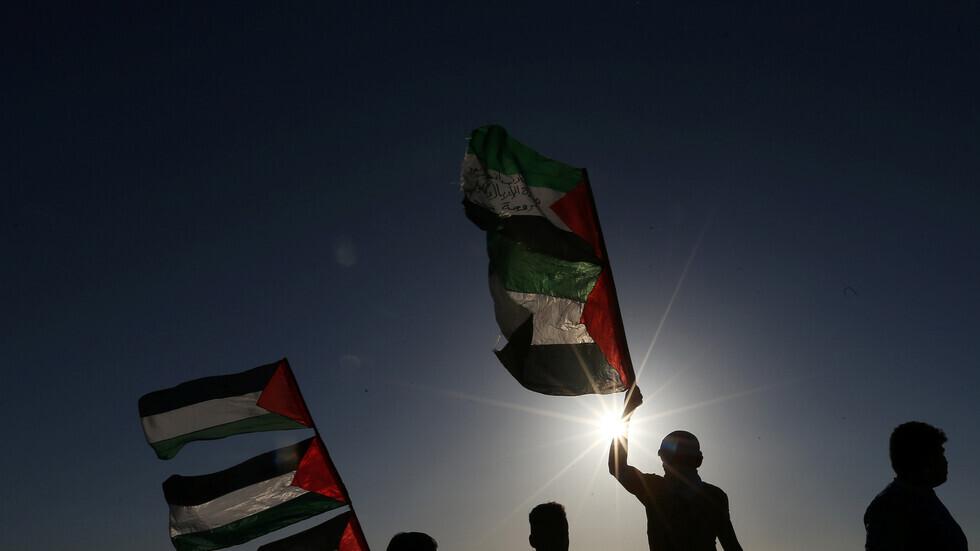 شباب يلوحون بأعلام فلسطين.