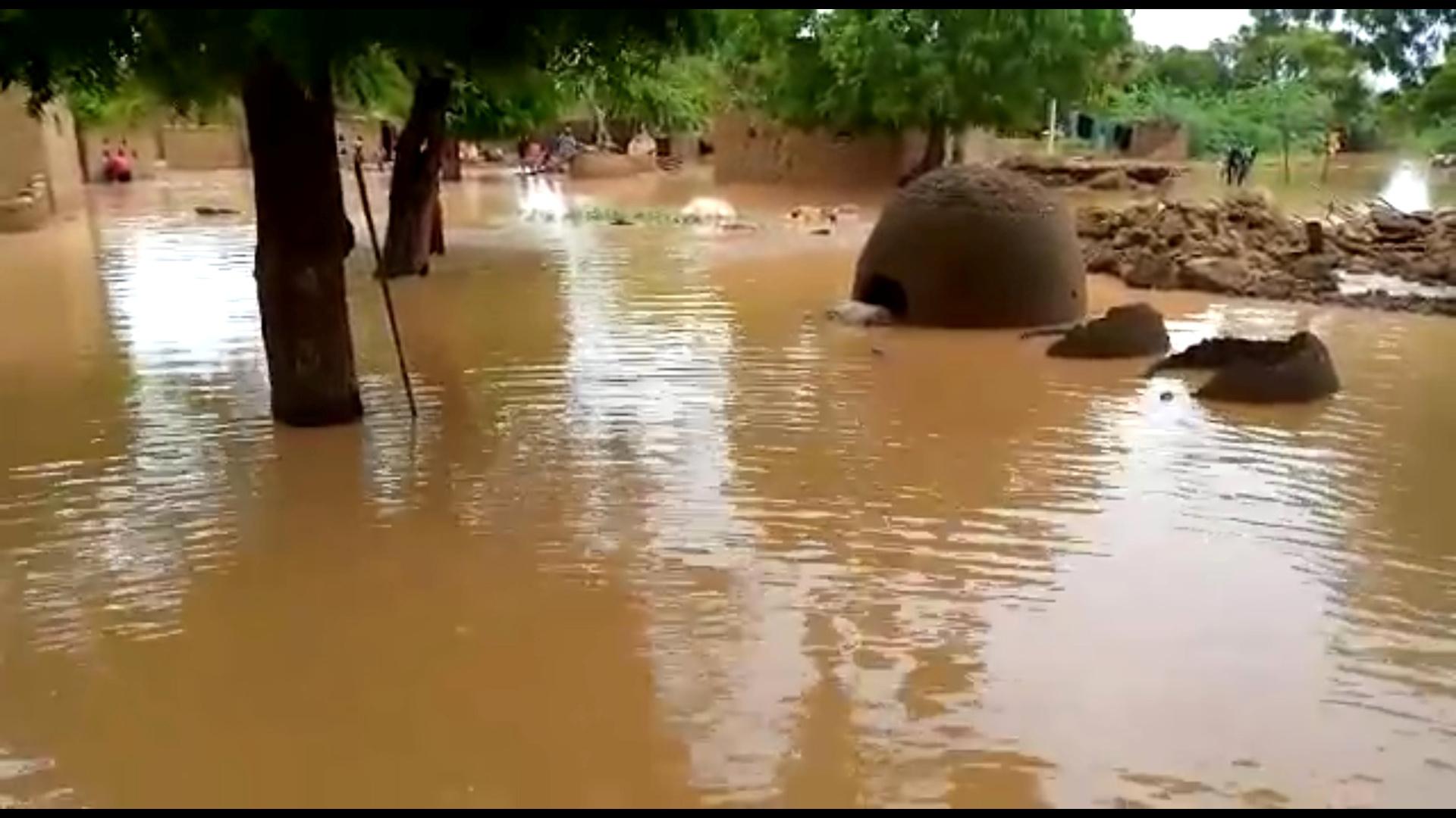 الفيضانات في النيجر.