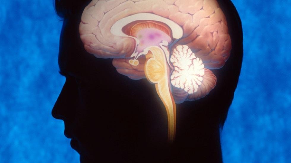اكتشاف منطقة الدماغ المسؤولة عن الرغبة الجنسية لدى الذكور