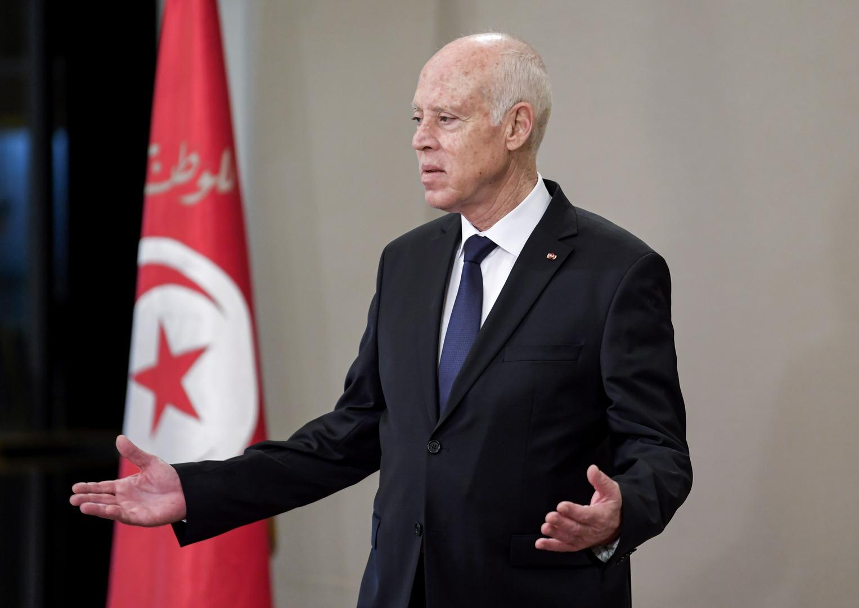 سعيّد: أسراب من الجراد تعبث بالدولة التونسية وأملاكها