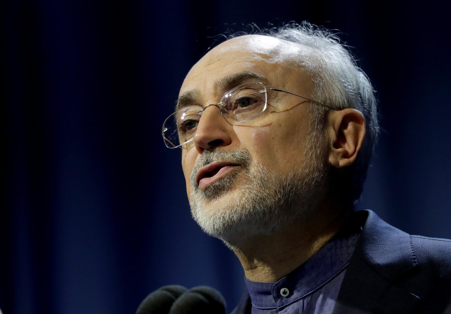 رئيس منظمة الطاقة الذرية الإيرانية، على أكبر صالحي
