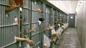 الجوع يقتل أكثر من 50 شخصا في سجن بالكونغو