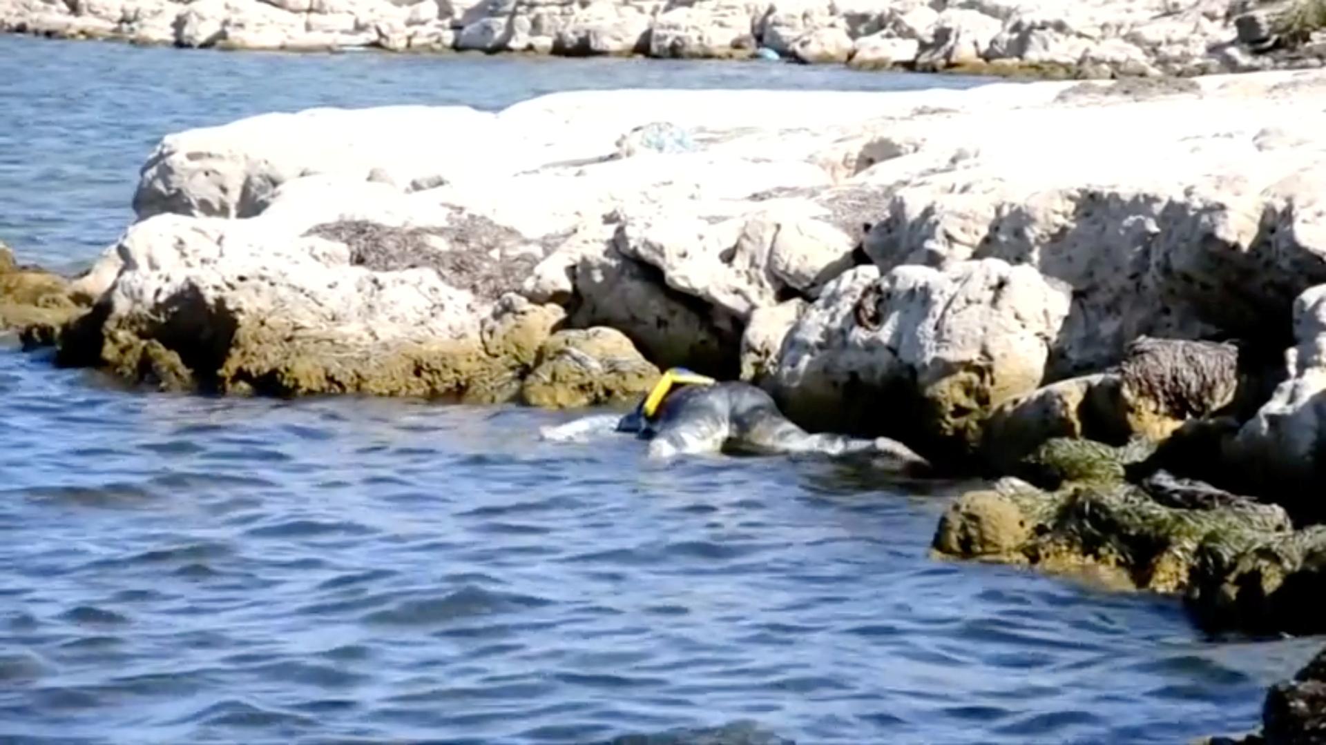 الحرس البحري التونسي ينتشل 6 جثث لفظها البحر على الشاطئ