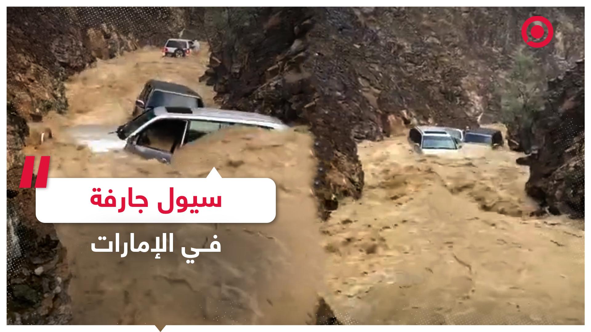 إنقاذ 5 أشخاص جرفت السيول سياراتهم في الإمارات