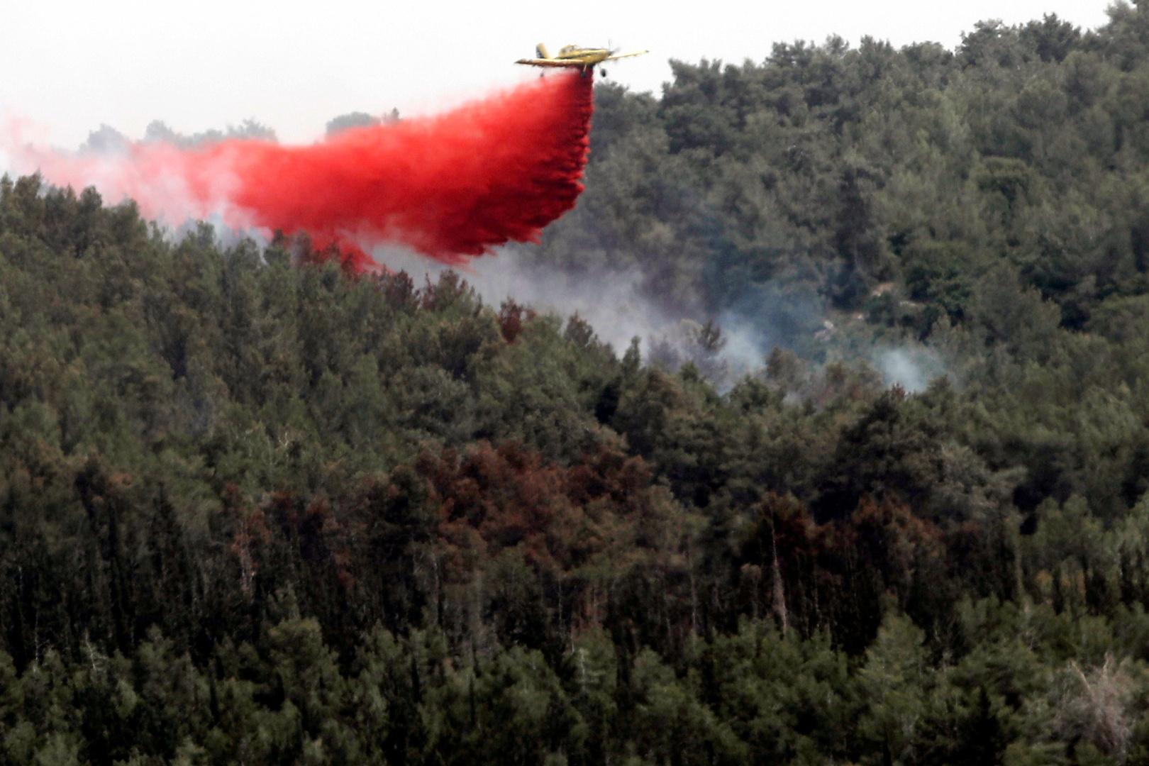 إطفاء حرائق في إسرائيل. الصورة: أرشيف رويترز.