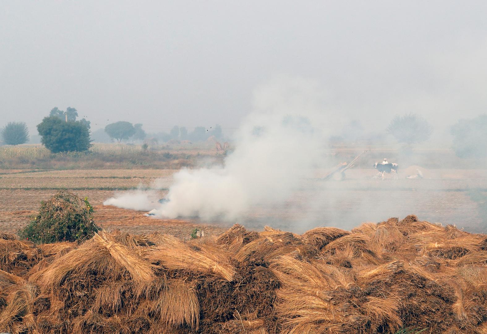 الهند تواجه تهديدا صحيا مزدوجا هذا الشتاء: التلوث والوباء