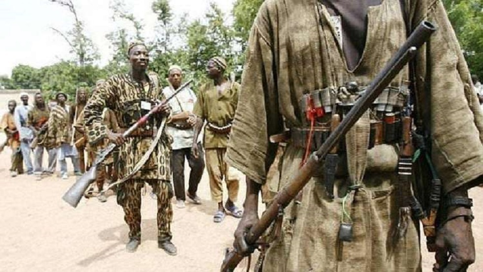 مسلحون في جمهورية مالي - أرشيف