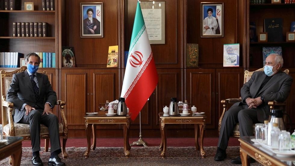 وزيرا الخارجية الإيراني محمد جواد ظريف ونظيره الفنزويلي خورخي ارياسا