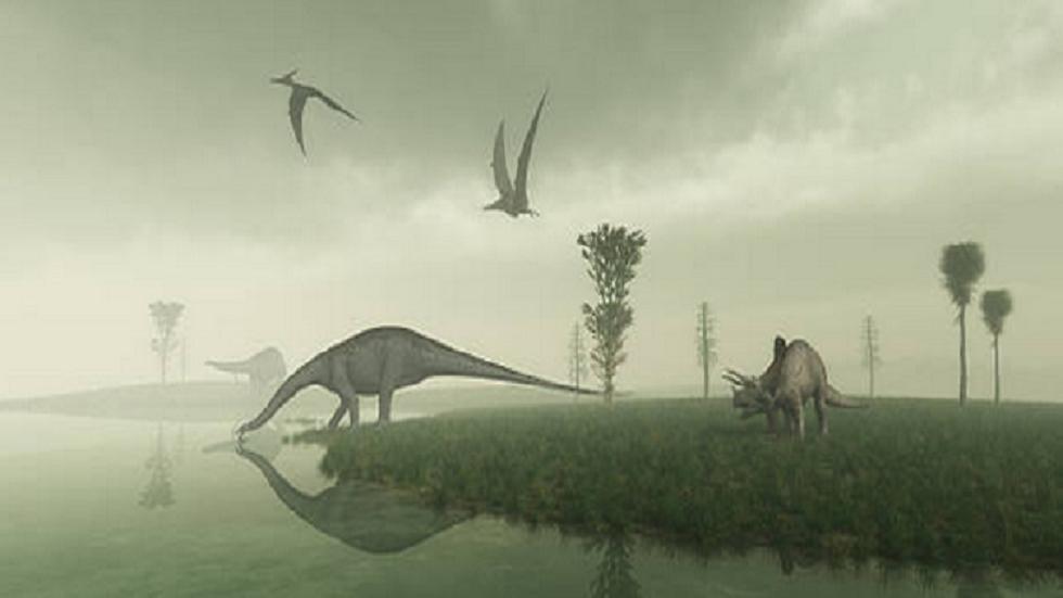 دراسة جديدة تدحض نظرية شائعة عن الديناصورات قبل أن يقضي عليها كويكب قبل 66 مليون عام