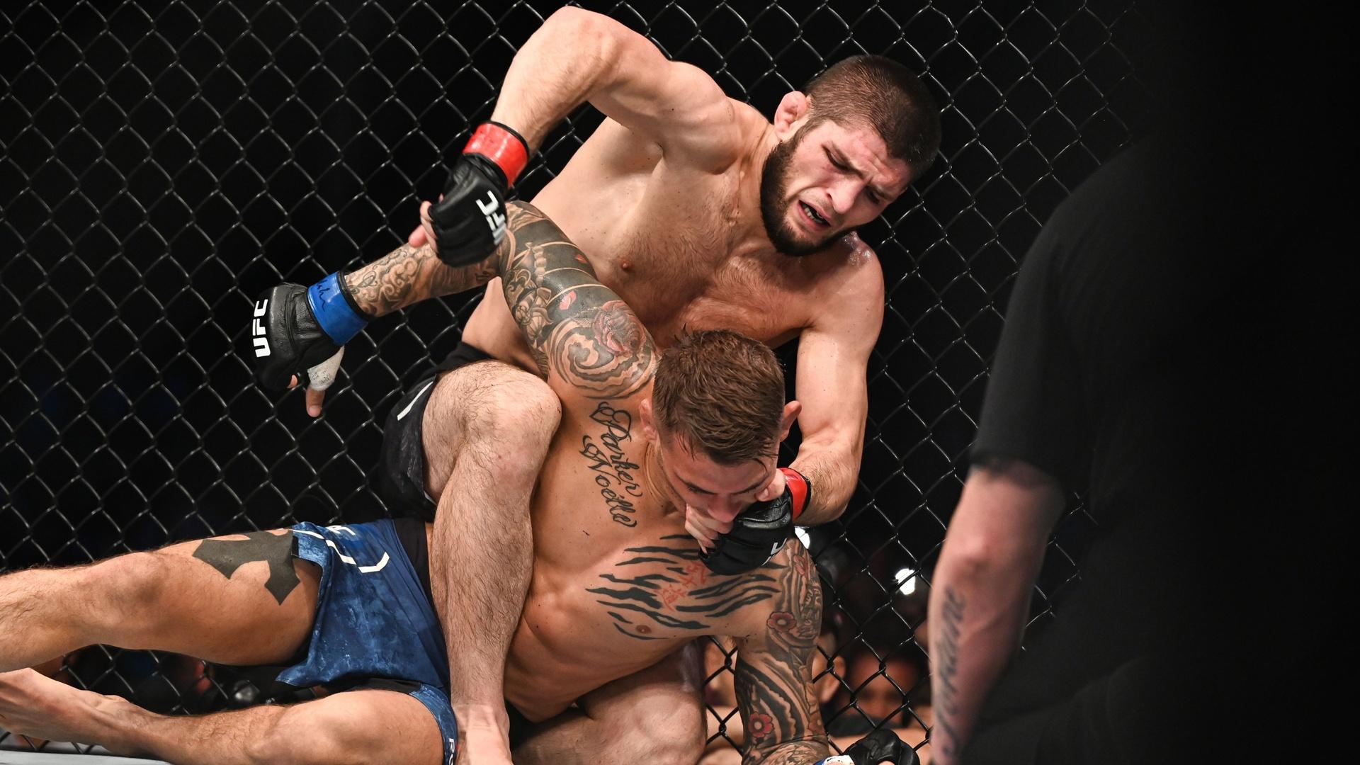 حبيب يكشف عن خططه ما بعد الاعتزال.. وإلى ماذا سيتحول بطل UFC