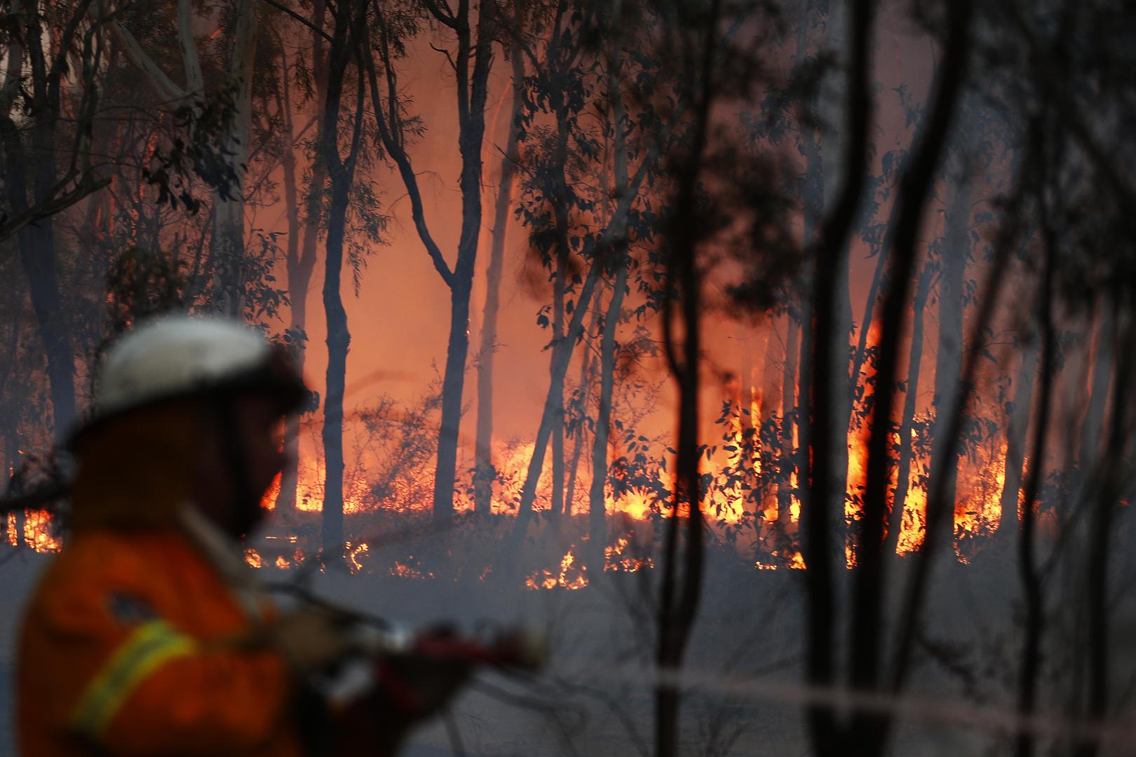 الحرائق في استراليا. الصورة: أرشيف.