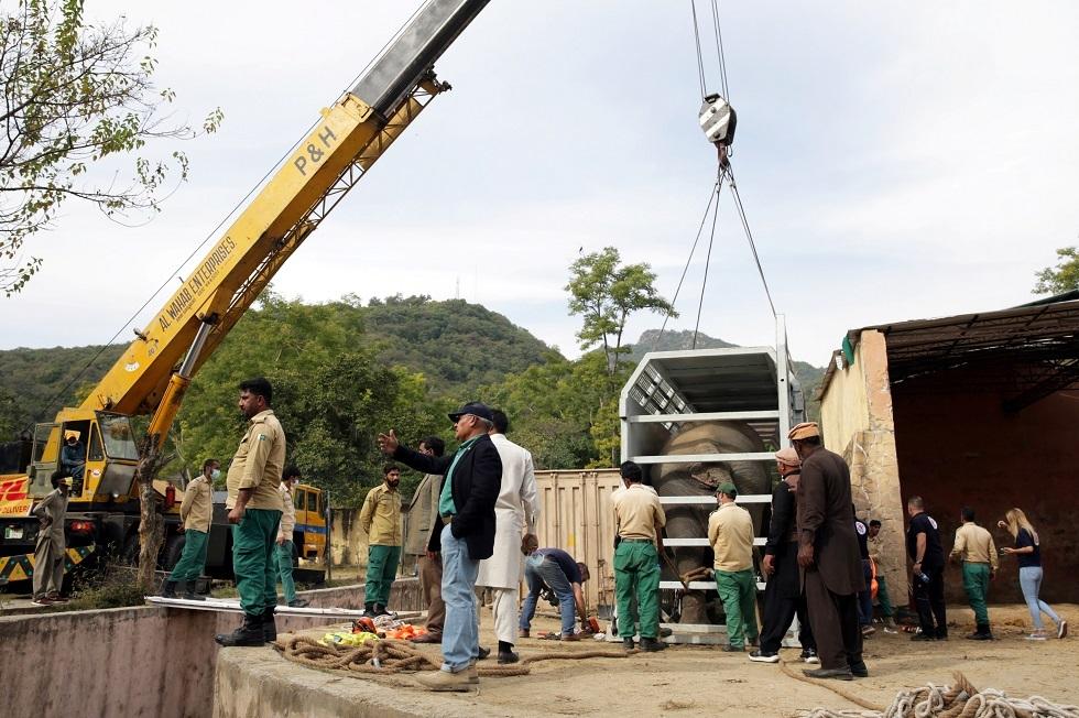 نقل الفيل الباكستاني