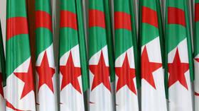 الأسطول الجزائري يتعزز بـ 3 سفن حربية روسية الصنع عالية القدرات