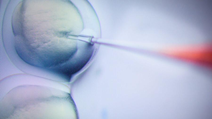 التلاعب الجيني: علماء يحققون تقدما كبيرا نحو كسب الحرب على الإيدز!