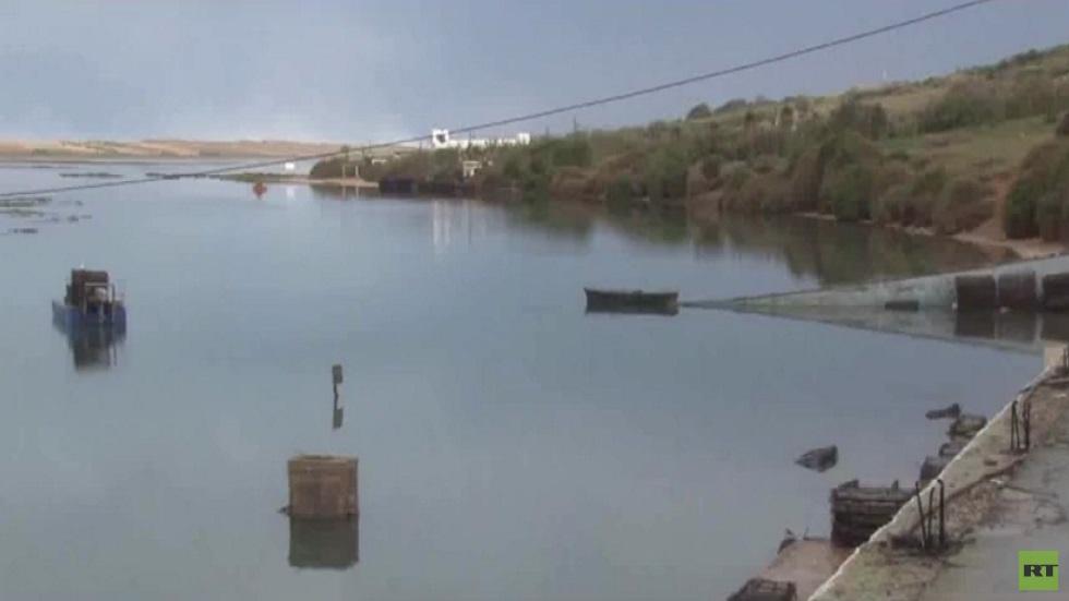 بلدة الوليدية عاصمة لإنتاج المحار بالمغرب
