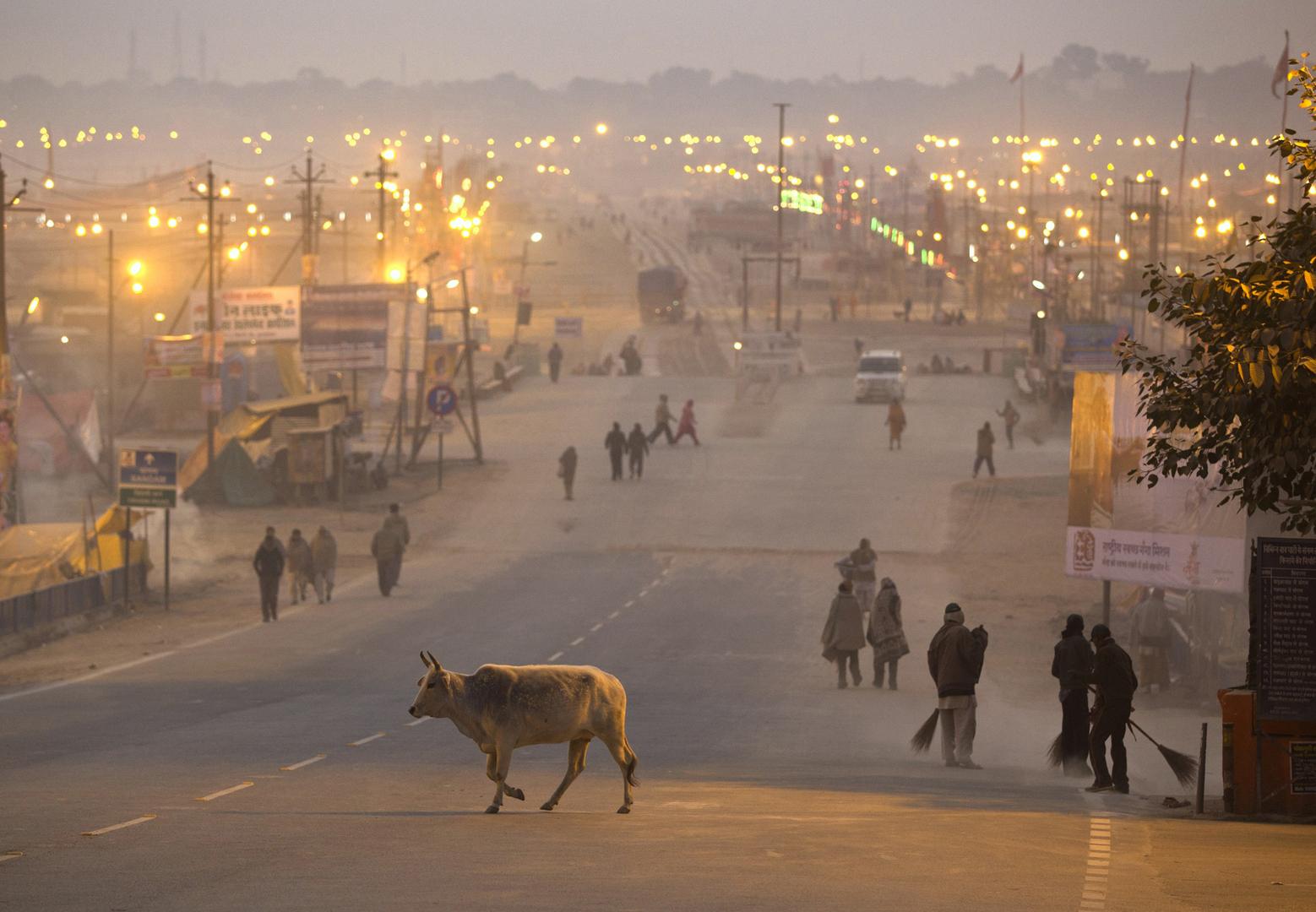 في مدينة الله آباد بالهند.