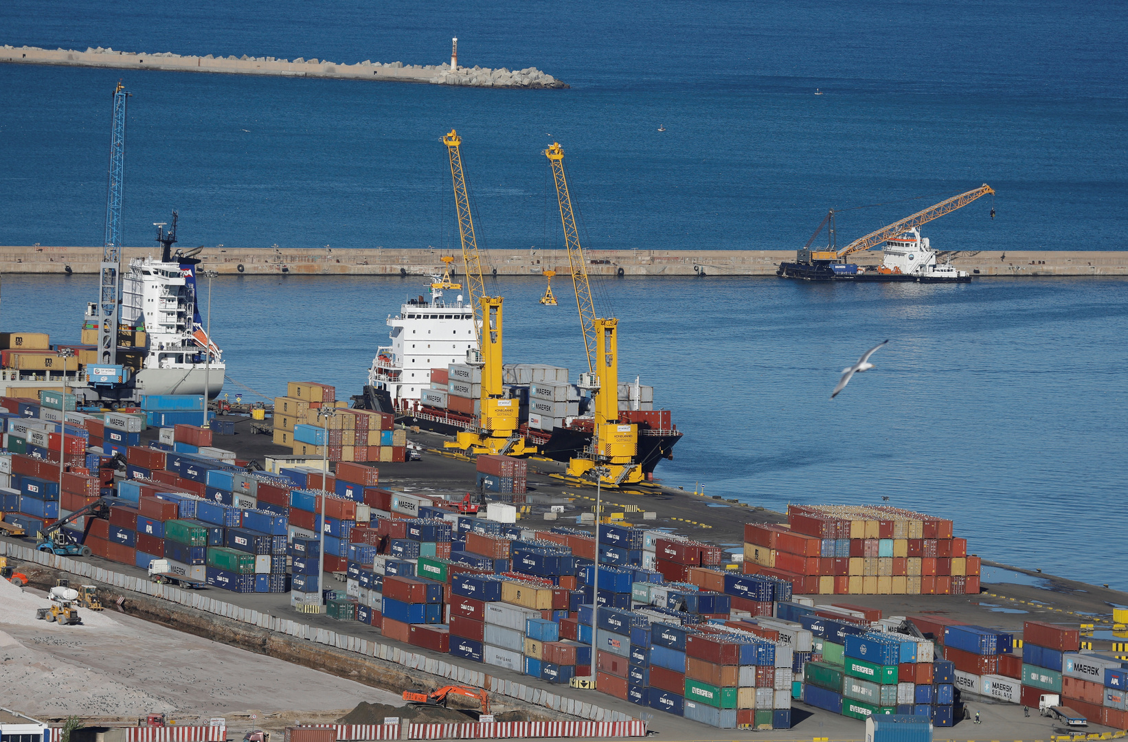 صحيفة: السلطات الجزائرية توضح حقيقة استيراد شحنة الحبوب