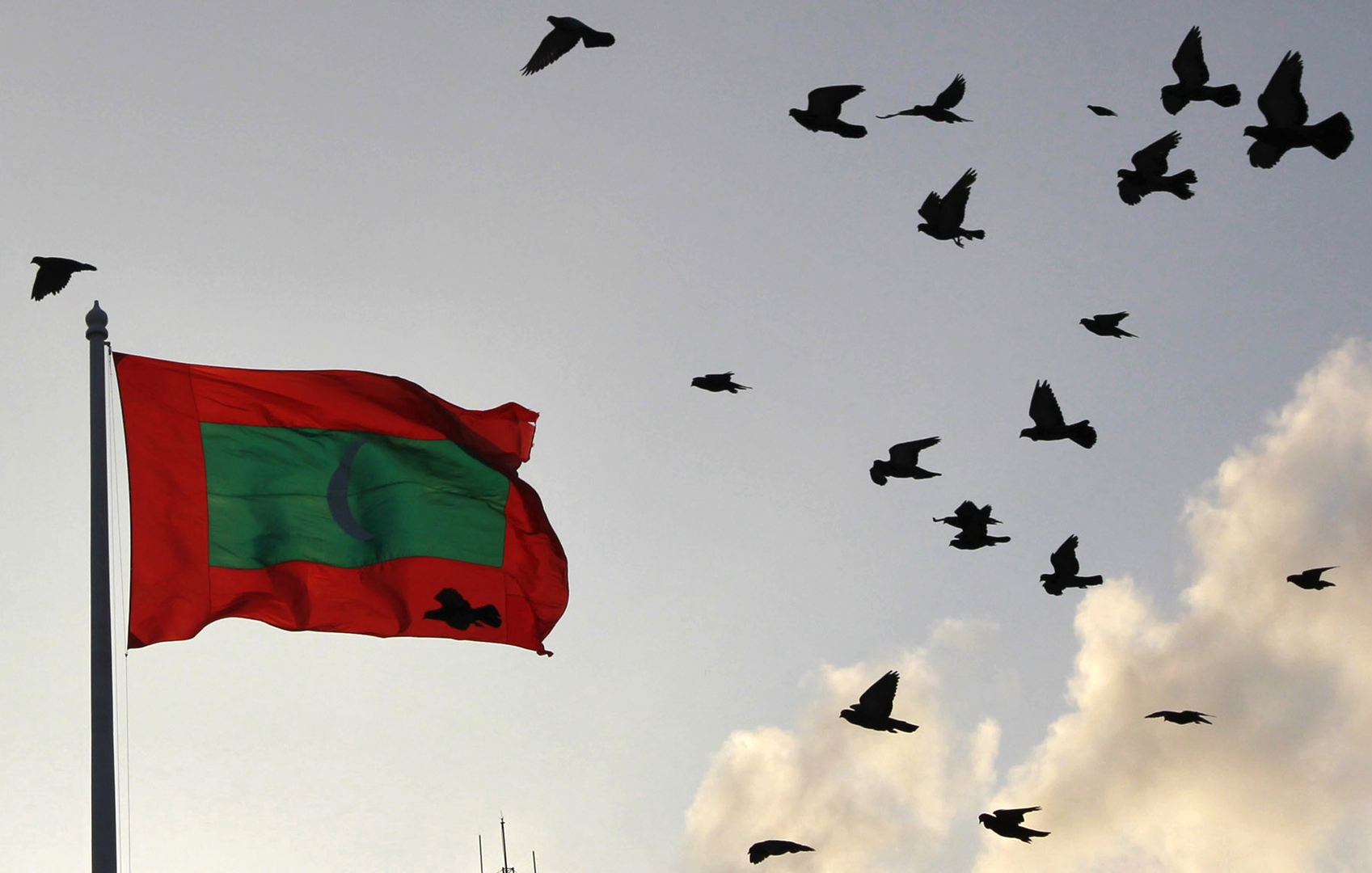 بعد المصالحة الخليجية.. المالديف تعلن عودة العلاقات مع قطر