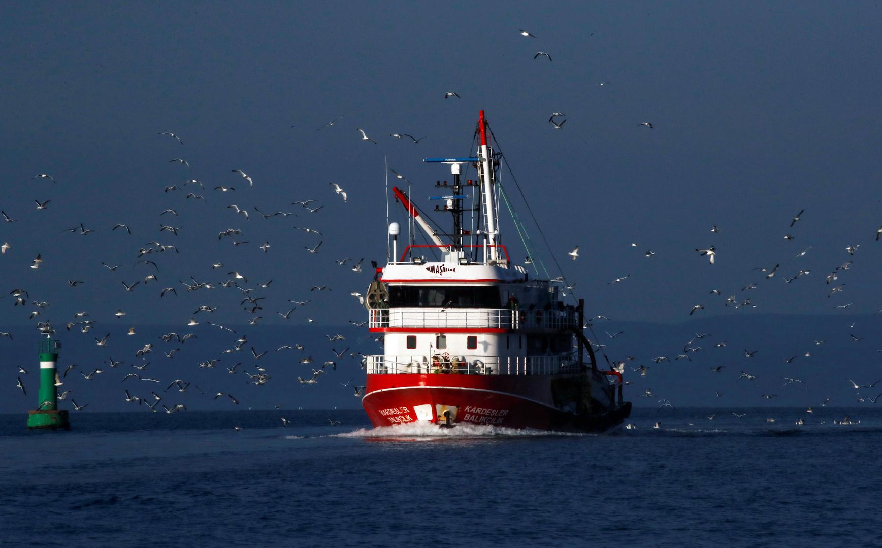 تصادم بين سفينتين تركية ويونانية في بحر إيجه