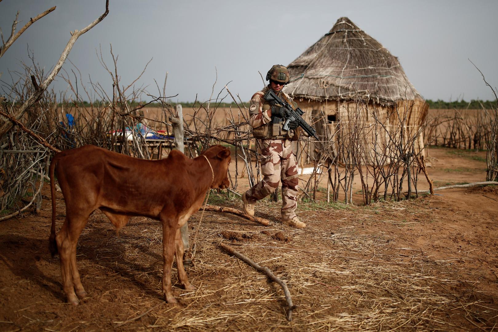 القوات الفرنسية في مالي.
