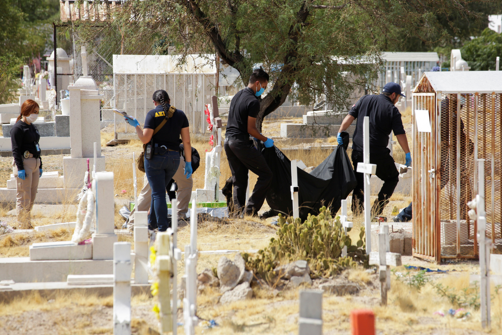 تقرير: مقتل نحو 35,5 ألف شخص في المكسيك العام الماضي